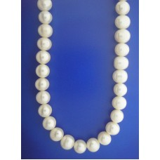 1654 8mm Fresh water Pearl Necklace